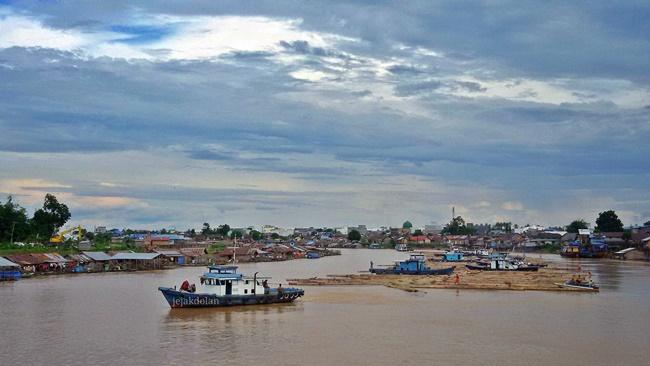 Proses Pengangkutan Kayu Log di Sungai Kahayan