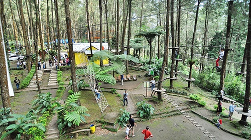 kopeng treetop - tempat wisata di kopeng